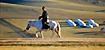 Mongolia - a cavallo nella steppaU1