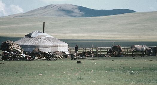 Mongolia - ger e steppa seppia