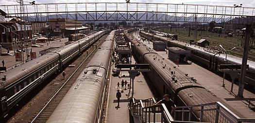 Transib - stazione orizz. seppia